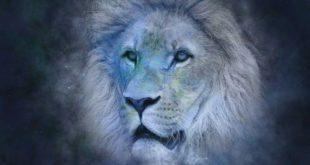 caratteristiche uomo leone