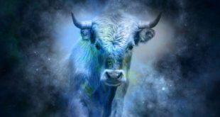 caratteristiche uomo toro oroscopo